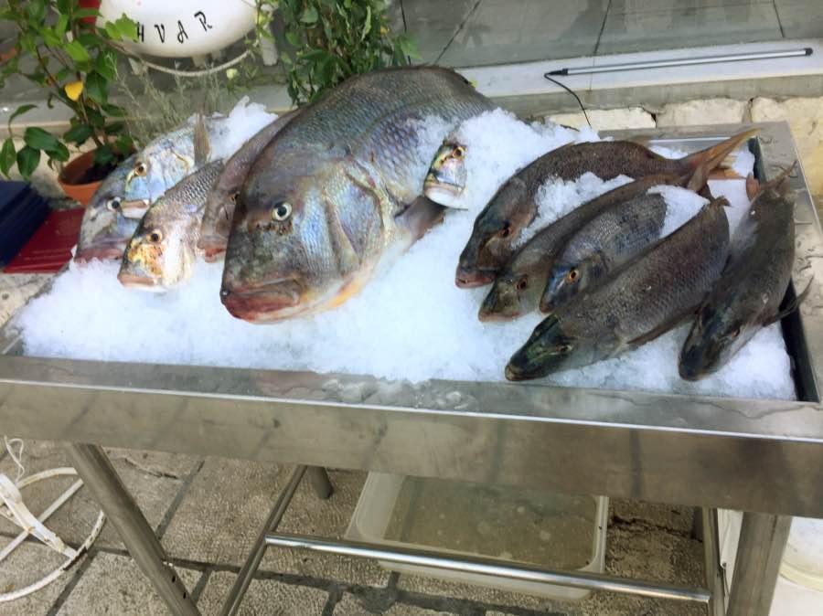 5-peces-restaurantes_Fotor