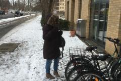 Nieve Berlin
