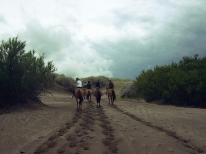 cabalgata entre los medanos_1