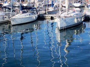 puerto barc 6