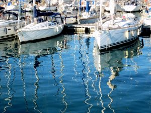 puerto barc 6_6