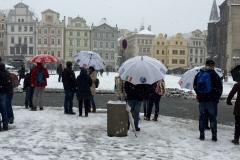 paraguas-tour